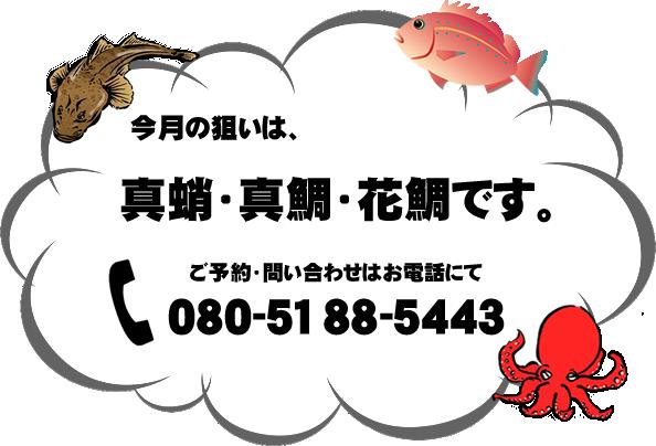 今月の狙いは、真蛸・真鯛・花鯛です。