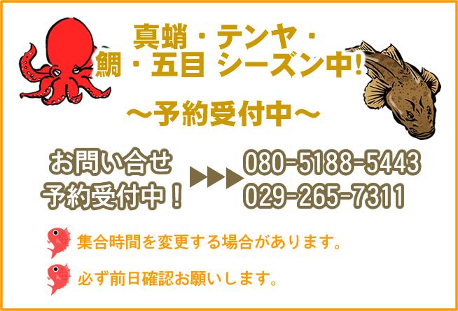 真蛸・テンヤ・鯛・五目シーズン中!